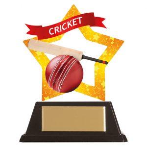 Mini-Star Cricket Acrylic Plaque 100mm