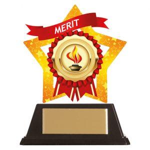 Mini-Star Merit Acrylic Plaque 100mm