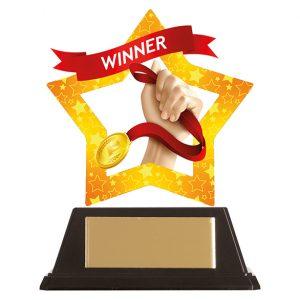 Mini-Star Winner Acrylic Plaque 100mm