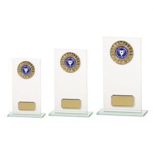 Warrior Jade Glass Multisport Award