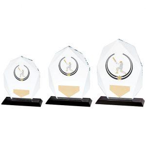 Glacier Cricket Glass Award