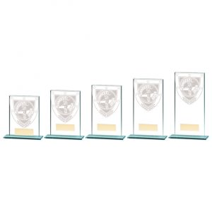 Millennium Longest Drive Jade Award