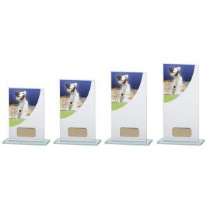 Colour-Curve Cricket Jade Glass Award