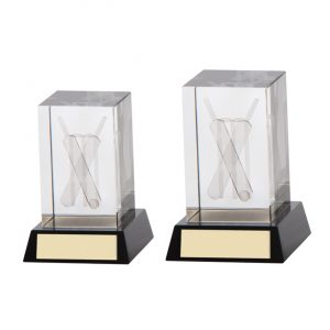Conquest Cricket 3D Crystal Award