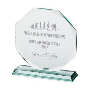 Recognition Jade  Crystal Award 165mm