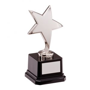 The Challenger Star Silver Award