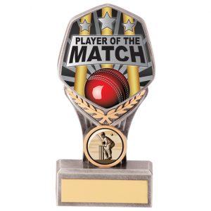 Falcon Cricket Player of Match Award – 140mm