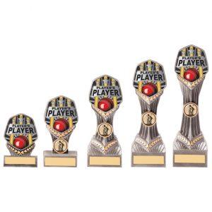 Falcon Cricket Player's Player Award