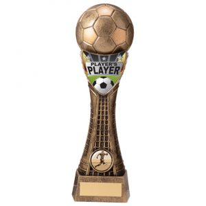 Valiant Football Player's Player Award Classic Gold – 245mm