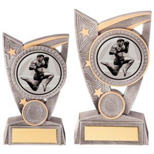 Triumph Kickboxing Award