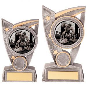 Triumph MMA Award