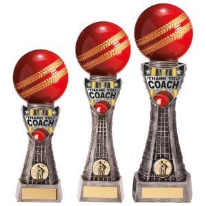 Valiant Cricket Thank You Award