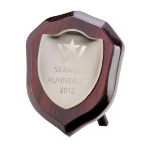 Vantage Shield in Silver 100mm