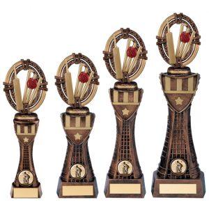 Maverick Cricket Heavyweight Award
