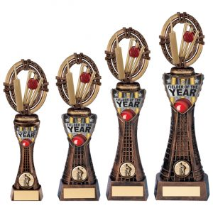 Maverick Cricket Fielder Award