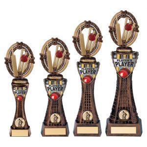 Maverick Cricket Player's Player Award
