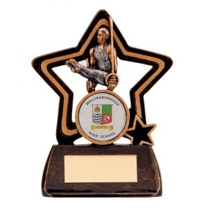 Little Star Gymnastics Award Male 105mm