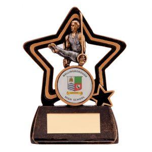 Little Star Gymnastics Award Male 105mm