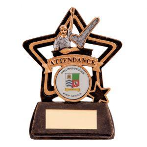 Little Star Attendance Award 105mm