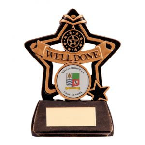 Little Star Well Done Award 105mm