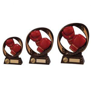 Typhoon Boxing Award