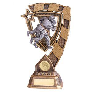Euphoria Judo Award – 210mm
