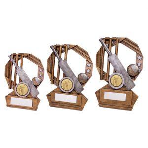 Enigma Cricket Award