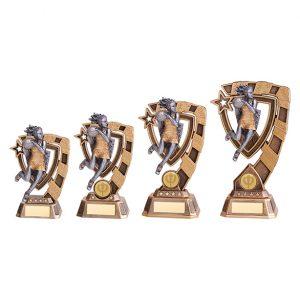 Euphoria Netball Award