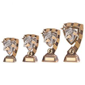 Euphoria MMA Award