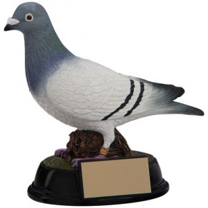 Elite Pigeon Racing Award 160mm