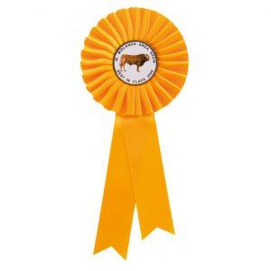 Champion Rosette Yellow 255mm – 255mm