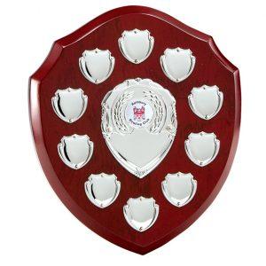 The Triumph Annual Shield Award  220mm