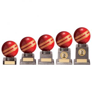 Valiant Legend Cricket Award