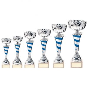 Eternity Cup Silver & Blue