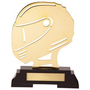 Arcadia Helmet Metal Award 190mm