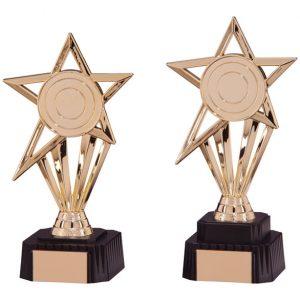 High Star Gold Award
