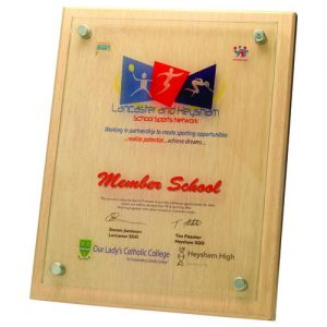 LIGHT WOOD PLAQUE WITH 6MM GLASS FRONT – 9in x 12in