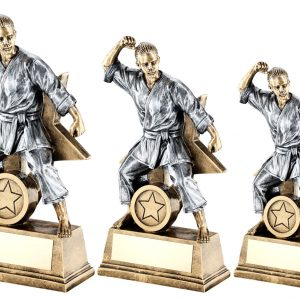 BRZ/GOLD/PEW FEMALE MARTIAL ARTS FIGURE WITH STAR BACKING TROPHY
