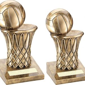 BRZ/GOLD NETBALL AND NET TROPHY