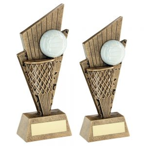BRZ/GOLD/WHITE NETBALL AND NET ON POINTED BACKDROP TROPHY