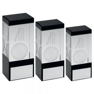 CLEAR/BLACK GLASS BLOCK WITH LASERED CRICKET IMAGE TROPHY