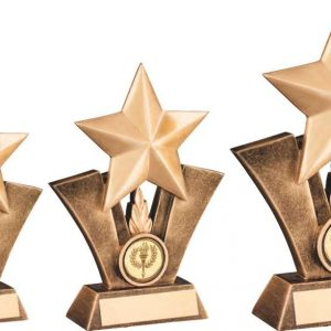 BRZ/GOLD GENERIC STAR RESIN TROPHY